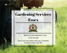 Gardening Services Essex | Garden Maintenance Services